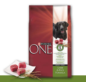 purinaone Purina One Dog Food For $2