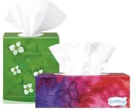 scotties tissue