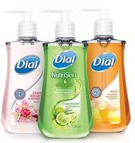 More Cheap Dial Soap At Publix!