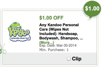 kandoo coupon publix Publix Digital Coupons   How They Work For Extra Savings
