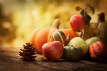 22676874 - autumn nature concept. fall fruit on wood