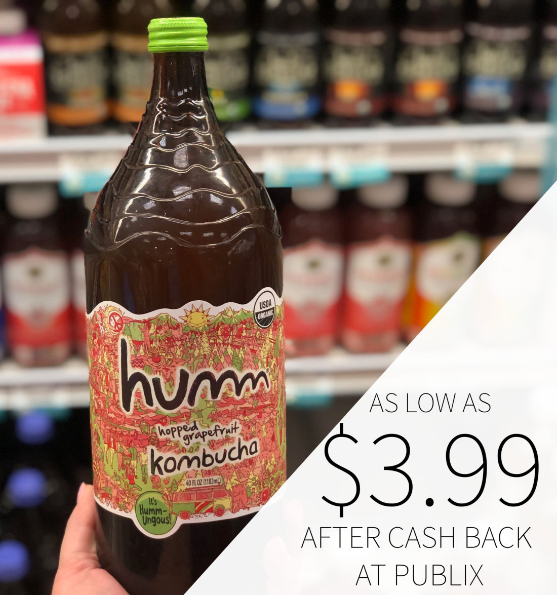 Humm Kombucha As Low As $3.99 At Publix