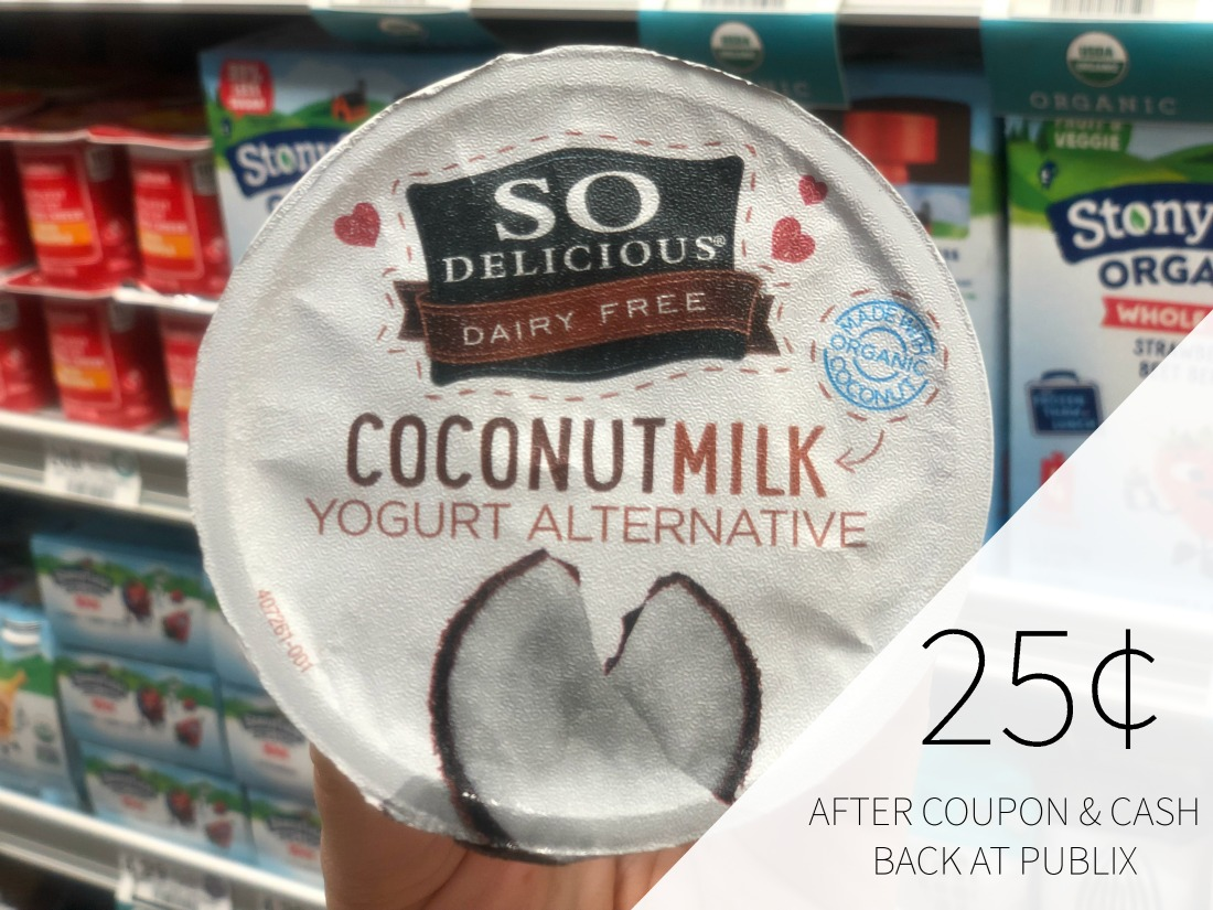 So Delicious Dairy Free Yogurt - Just 25¢ At Publix on I Heart Publix 1