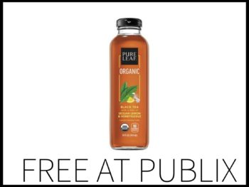 FREE on I Heart Publix 3