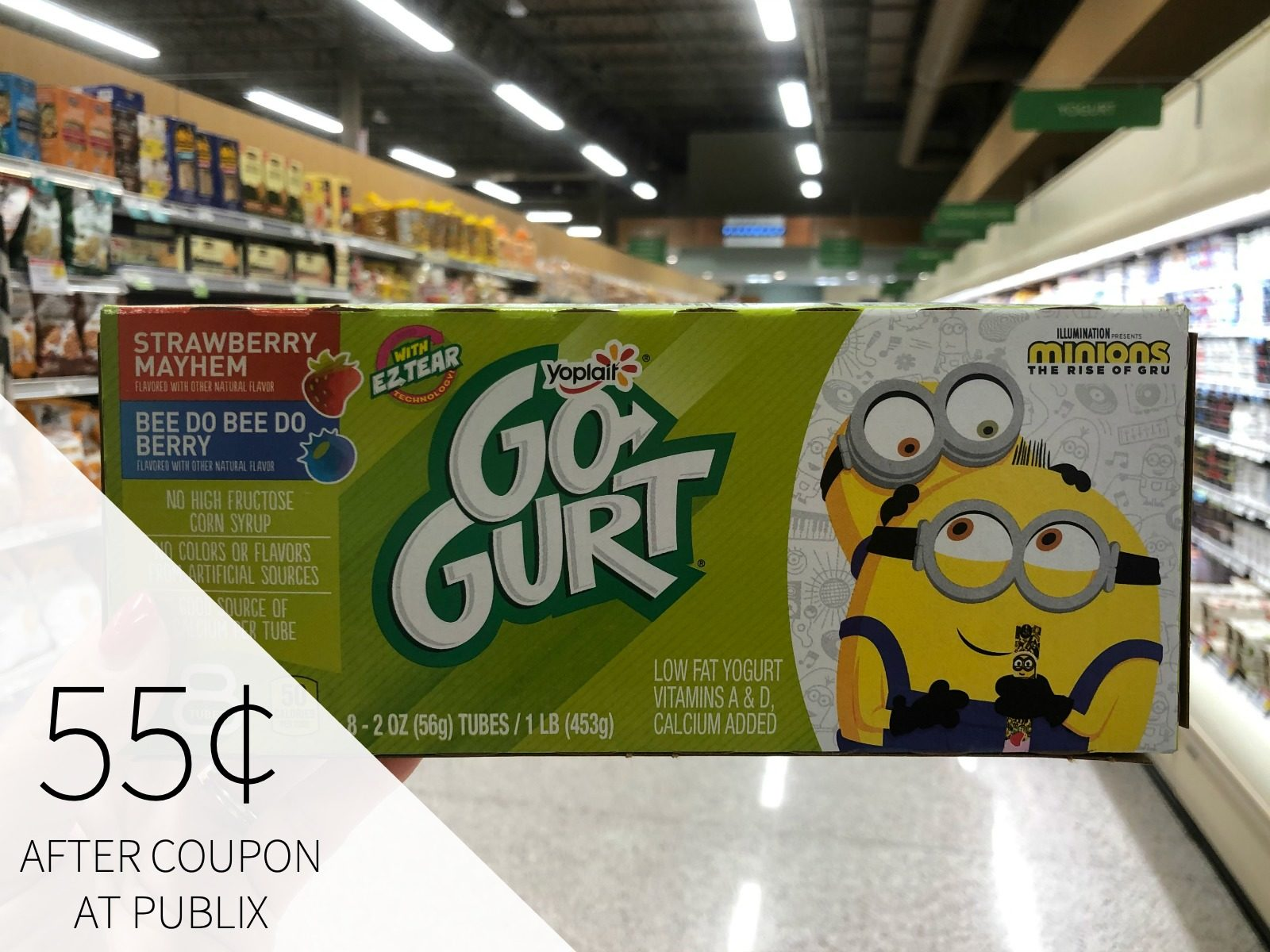 Yoplait Go Gurt Only 55 At Publix