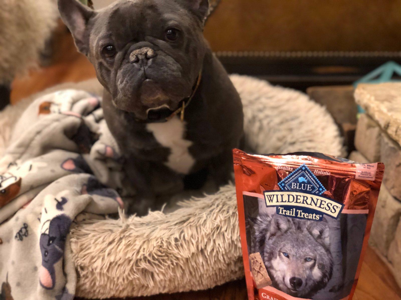 Blue Wilderness Crunchy Dog Treats Just $1.75 At Publix on I Heart Publix