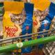 Meow Mix Cat Food Just $1.65 Per Bag At Publix on I Heart Publix