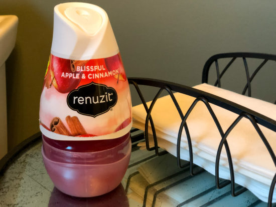 Renuzit Gel Air Fresheners Only 50¢ Each At Publix on I Heart Publix 3