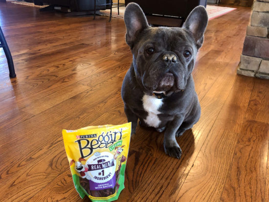 Purina Beggin' Strips Just 50¢ At Publix on I Heart Publix 2
