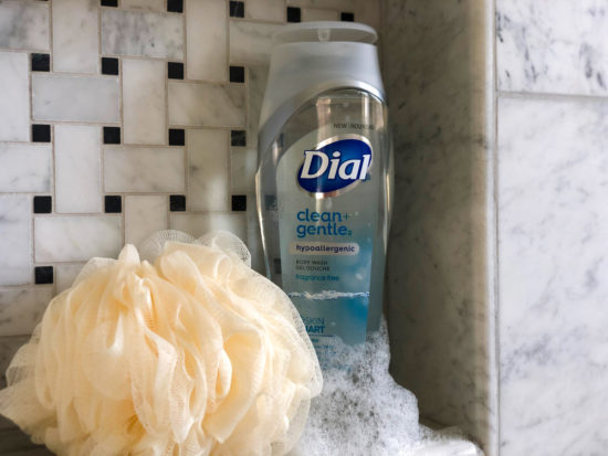 Dial Body Wash As Low As FREE At Publix on I Heart Publix
