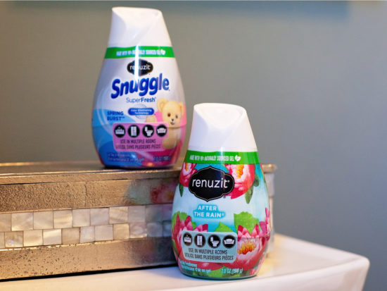 Renuzit Gel Air Fresheners Only 39¢ Each At Publix on I Heart Publix