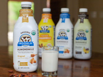 Mooala Plant Based Milk Just 50¢ At Publix on I Heart Publix